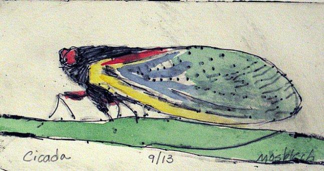 cicada-mary-mosblech